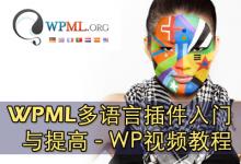 WPML多语言插件入门和提高 WPML视频教程